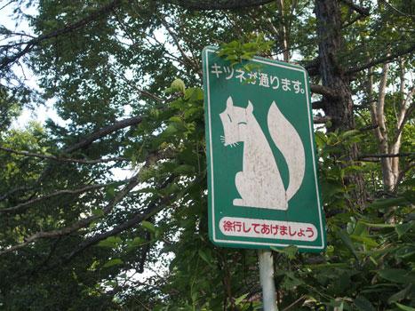 130825_志賀高原01.jpg