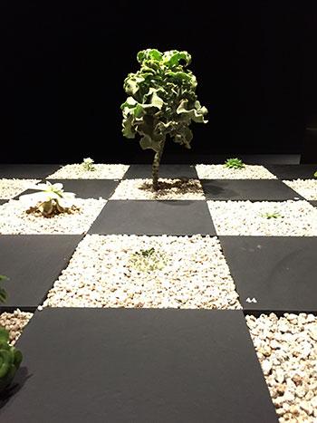 160919_世界の植物文様展.jpg