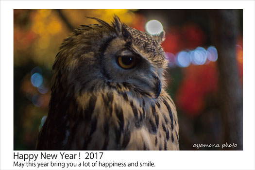 170101-happy2017.jpg