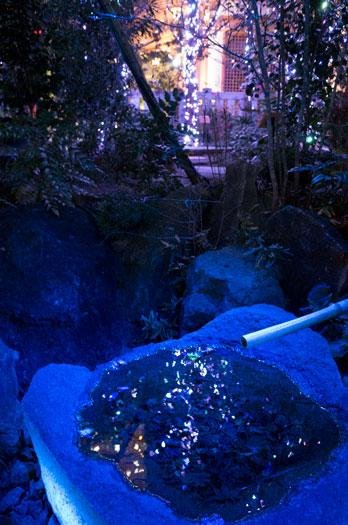170108_福徳の森-06.jpg