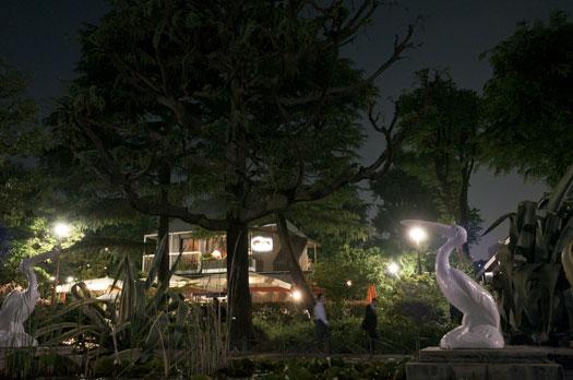 170521_夜の日比谷公園.jpg