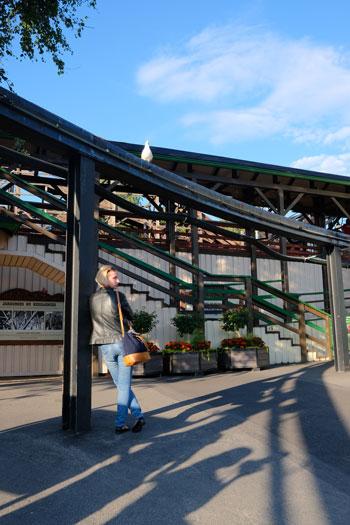 fin-066-リンナンマキ遊園地06.jpg